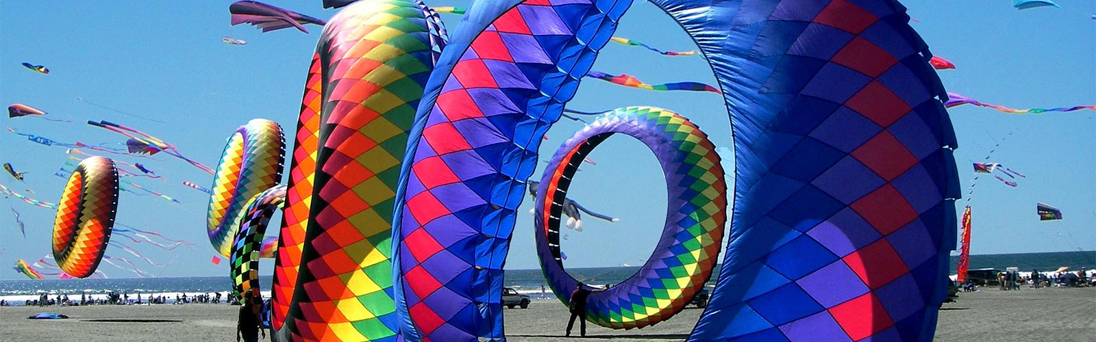 Kite Festival Destination