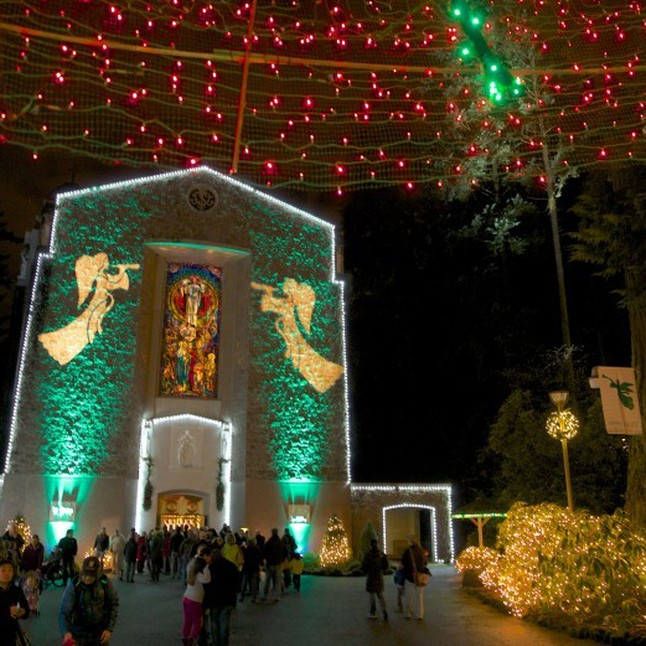 Grotto Lights, 100 Trees and Bob's Red Mill